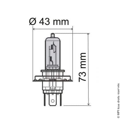 AMPOULE 12V / 35W (HS1)