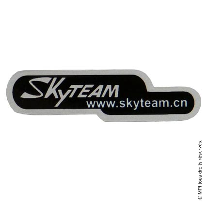 STICKERS SKYTEAM X 10